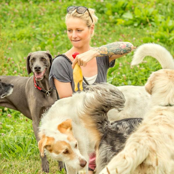 Gassiservice Hundebetreuung Bellosbest Urlaubsbetreuung Ausführservice Foto von Zaubergraphie