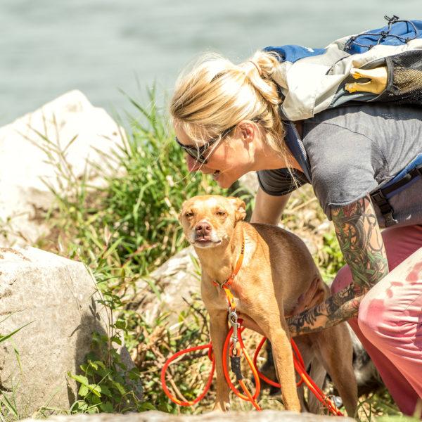 Bellosbest Hundebetreuung, Foto von Zaubergraphie